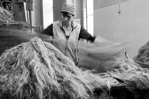Linen spinning, linen fiber selection - AB Siulas